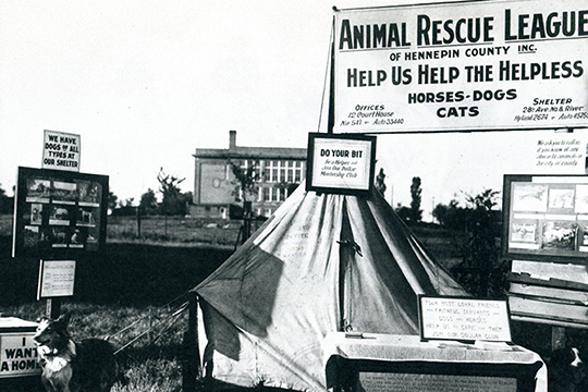 Outdoor display for Animal Rescue League