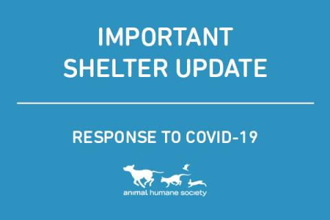 Importing shelter update regarding COVID-19