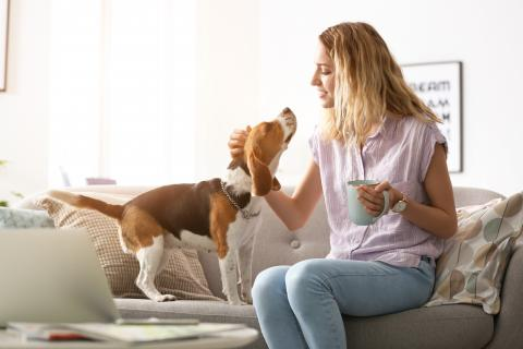 Woman on couch with dog and coffee