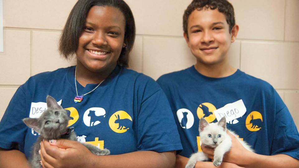 Volunteer Opportunities For Youth Animal Humane Society