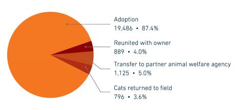 FY18 Companion animal placement by type