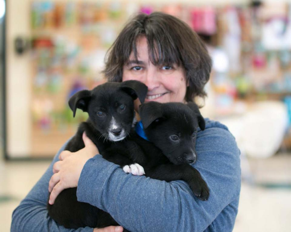 Woman holding two black lab puppies
