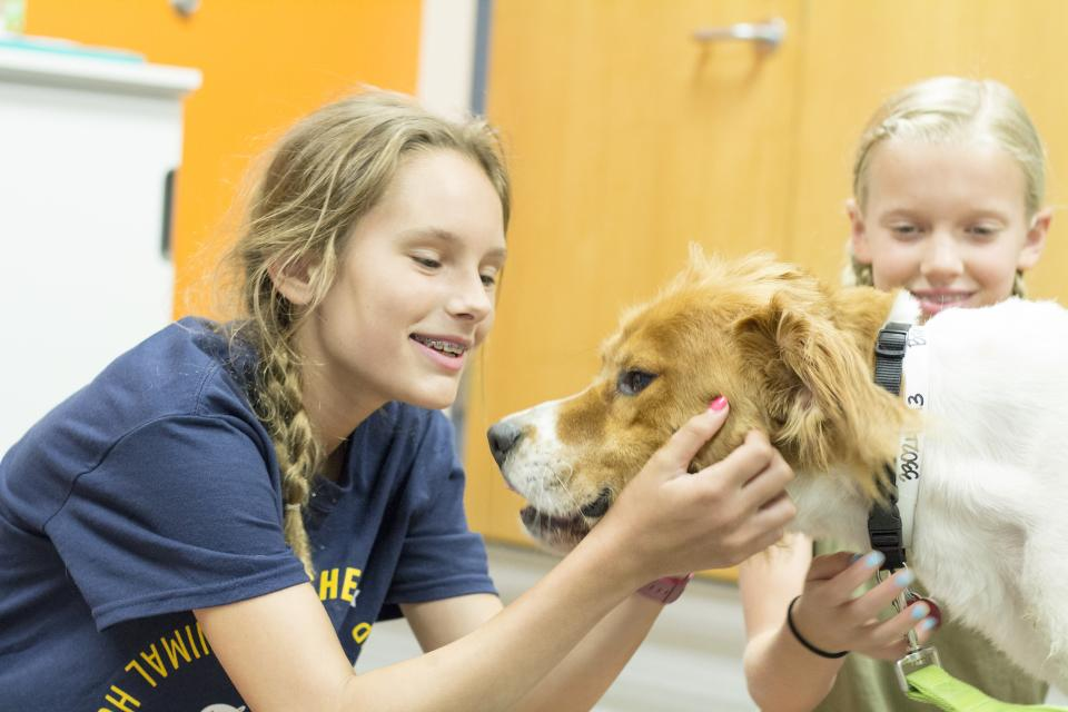 Animal Humane Society Day Camp