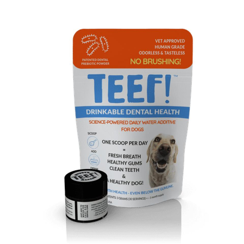 TEEF, dental care for dogs